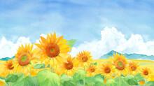 青空と入道雲のひまわり畑の風景。水彩イラスト。横長バナー背景。