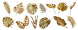 Leinwandbild Motiv Tropical leaves in gold color on white space background.Abstract monstera leaf decoration design.clipping path