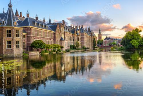 Stampa su Tela The Binnenhof castle in the Hague city, Netherlands