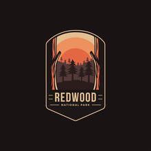 Emblem Patch Logo Illustration Of Redwood National Park On Dark Background