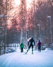 Skiers Ride Through The Winter Forest. Winter Outdoors Activities Concept. Healthy People Lifestyle. Ski Trails In Streets Of Finnish City. Cross-country Skiing. Helsinki, Finland