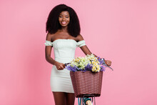 Photo Of Young Afro Girl Happy Positive Smile Hold Bicycle Basket Flower Isolated Over Pink Color Background