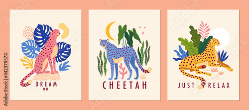 Fotografiet Cheetah posters collection
