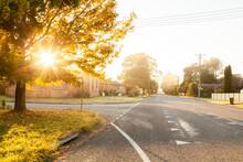 Golden Sun Flare Through Autumn Tree On Street Corner On A Cold Misty Morning