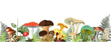 Illustration Background With Mushrooms With Fern Leaves. Mushrooms: Fly Agarics, Chanterelles, Porcini Mushrooms, Honey Agarics And Others