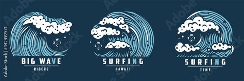 Fotografie, Obraz Surfing hawaii wave with foam for print