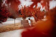 Little Girl Sitting Amongst Autumn Trees