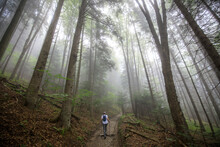 Pieniny National Park (Poland): Woman Hiking On The Misty Mountain Road Early In The Morning