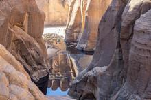Camels In Guelta D'Archei, Chad, Sahara Desert, Africa