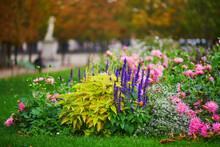 Beautiful Fall Day In Tuileries Garden, Paris
