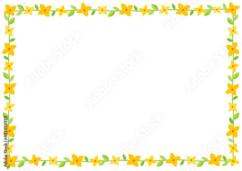 Fotografia Forsythia flowers decorative frame isolated on white background.
