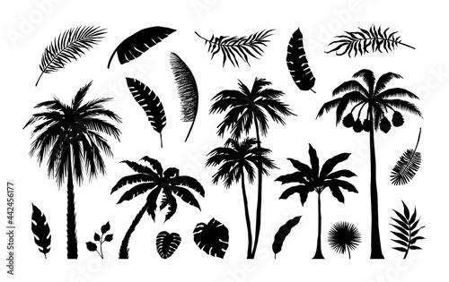 Canvas Palm silhouette