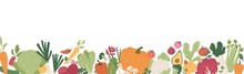 Fresh Vegetables And Greens Border. Banner With Healthy Organic Farm Food. Natural Veggies Of Summer And Autumn Seasons. Colored Flat Vector Illustration Of Fall Harvest Isolated On White Background