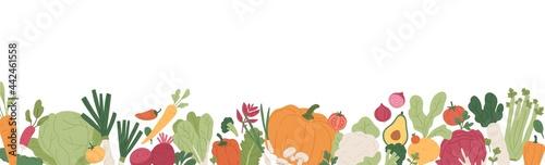 Slika na platnu Fresh vegetables and greens border