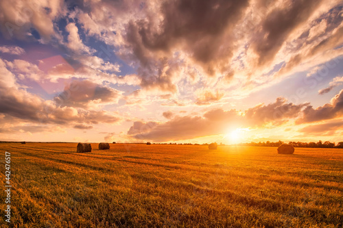 Tablou Canvas Sunset on the field with haystacks in Autumn season
