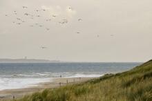 Jogger Op Strand, Jogger At Beach