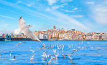 Galata Tower, Galata Bridge, Karakoy District And Golden Horn At Morning, Istanbul - Turkey - Large Flock Of Seagulls Flying At The Sea