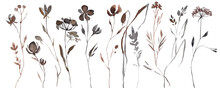 Abstract Watercolor Autumn Flower Set. Herbarium In Boho Style. Field Fall Flowers. Frame Fall Flowers.