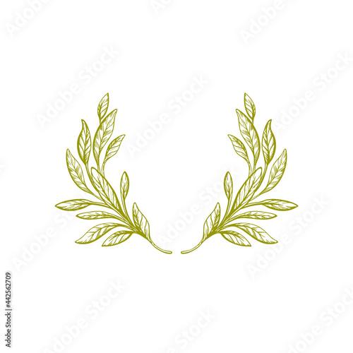 Fotografie, Obraz Olive wreath. Vintage branch. Vector art border