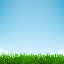 Green Grass And Bright Blue Sky
