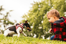 Baby Boy Playing With A Little Dog In A Park