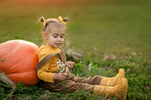 A Girl In A Strucx Jumpsuit Is Sitting On The Grass In The Vegetable  Garden, Leaning On A Huge Orange Pumpkin And Holding A Bouquet Of Wild Flowers In Her Hands. Cute Little Child