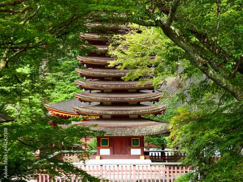 Obraz na plátne 新緑の中の談山神社十三重の塔