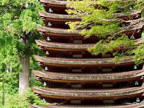 Fototapeta 新緑の中の談山神社十三重の塔