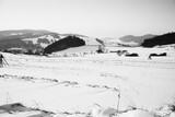 Pieniny góry zima Dunajec