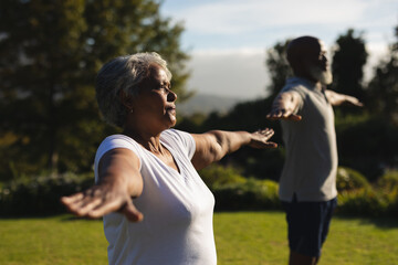 Senior african american couple practicing yoga in stunning countryside