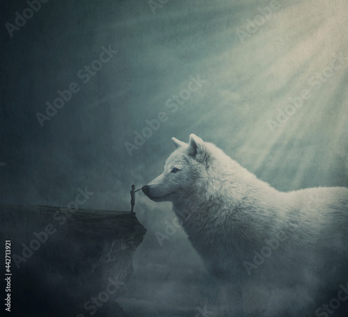 Fotografiet Surreal dreamland scene with a person on the edge of a cliff try to get in touch with a huge white wolf