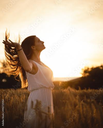 Fototapeta Sunset in a wheat field