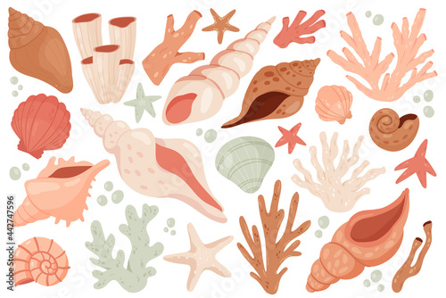Fotografie, Tablou Seashell cute marine set vector illustration