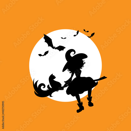 Fotografija Witch with cat flies on the broom in the night sky