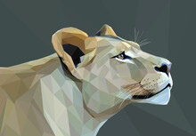Geometrical, Low Poly,  Illustration Of A Lioness Head From The Side.