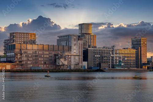 Fototapeta Rotterdam