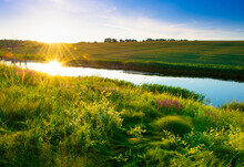 Beautiful Summer Landscape, Beautiful View Of The Lake, Surrounded By Meadows And Green Forest. Blue Sky Over Plain, Nature, Background