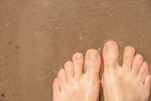 Female Feet In River Water On Sand, Feet In Water