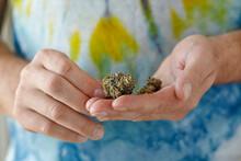 Handful Of Cannabis Strain Gelato