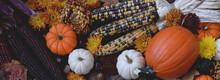Autumn Pumpkings, Gourds And Corn Web Banner