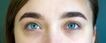 Young Girl With Natural Makeup. Eyebrow Correction In A Beauty Salon. Closeup Shot Of Woman Eye With Makeup