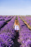 A girl in a field of lavender. A child walks in Provence. Photo from the back