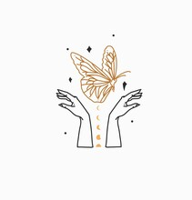 Hand Drawn Vector Abstract Stock Flat Graphic Illustration With Branding Logo,bohemian Celestial Magic Art Of Butterfly,moon Phases Silhouette In Woman Hand,simple Style,astrology Feminine Concept.
