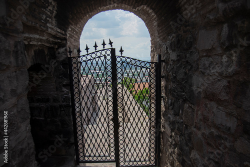 Fotografia, Obraz Cold iron inlaid double-winged door in Ankara Castle
