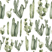Watercolor Floral Seamless Pattern. Hand Painted Tropical Leaves, Mexican Cactus, Monstera. Greenery Isolated On White Background. Botanical Illustration For Textile, Print, Digital Paper