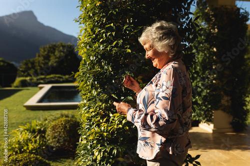 Smiling senior caucasian woman using smartphone in sunny garden