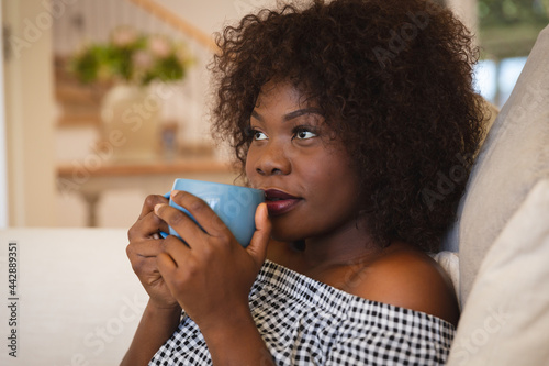 Portrait of smiling african american woman having tea sitting on sofa at home