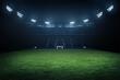 Leinwandbild Motiv Professional soccer field stadium background