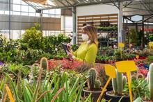 Female Gardener Using Tablet In Garden Center