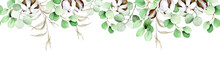 Watercolor Seamless Border, Frame, Banner With Eucalyptus Leaves, Cotton Flowers And Dry Herbs Isolated On White Background. Autumn Delicate Print, Pattern.